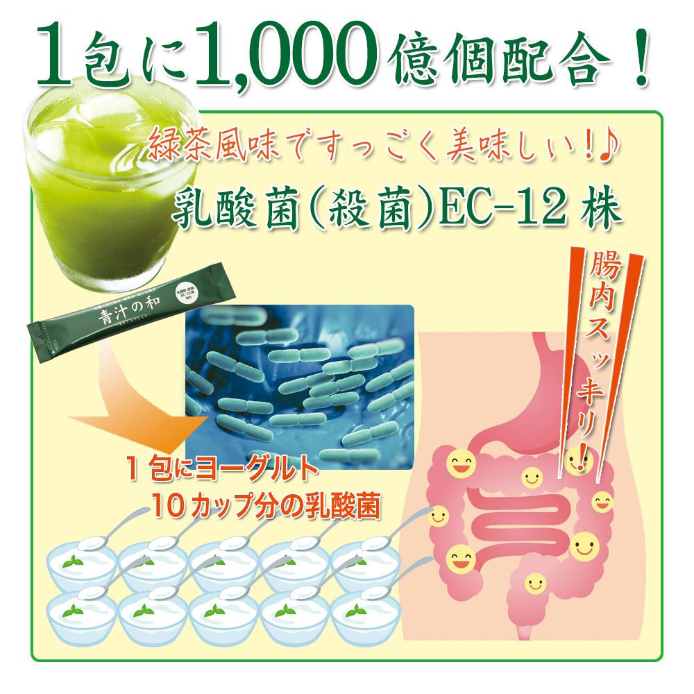 1包に1,000億個の乳酸菌(殺菌)EC-12株 配合!抹茶風味で美味しい