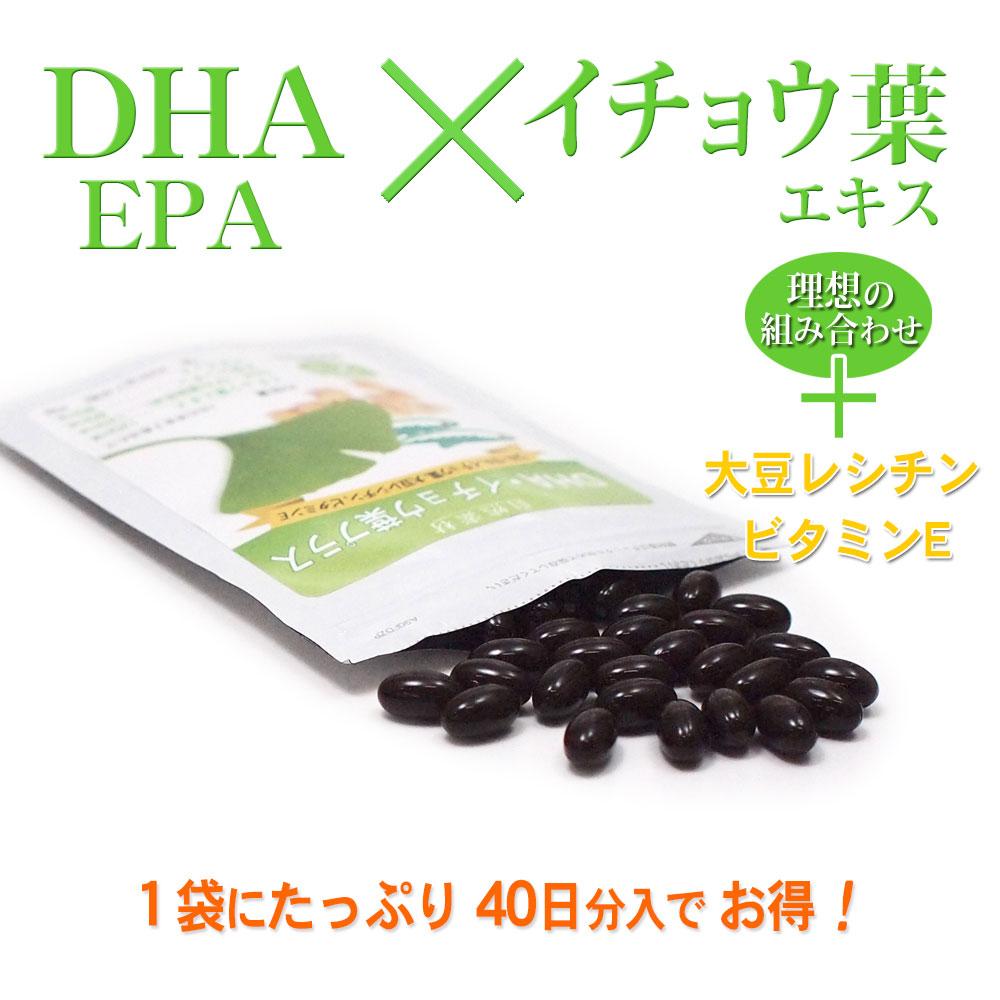 DHA・EPA×イチョウはエキスさらに大豆レシチンとビタミンE配合。1袋に40日分入でお得!