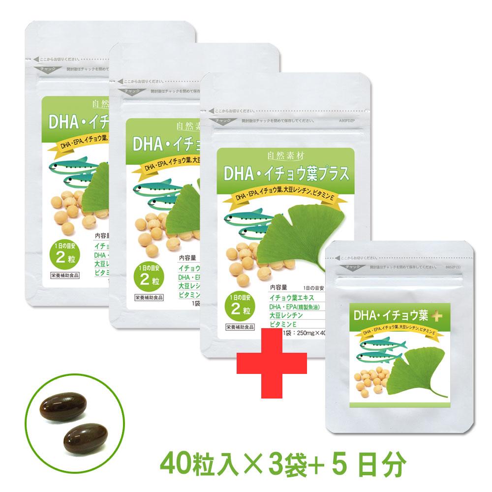 DHA・イチョウ葉プラス40粒入×3袋セット DHA・EPA、イチョウ葉配合