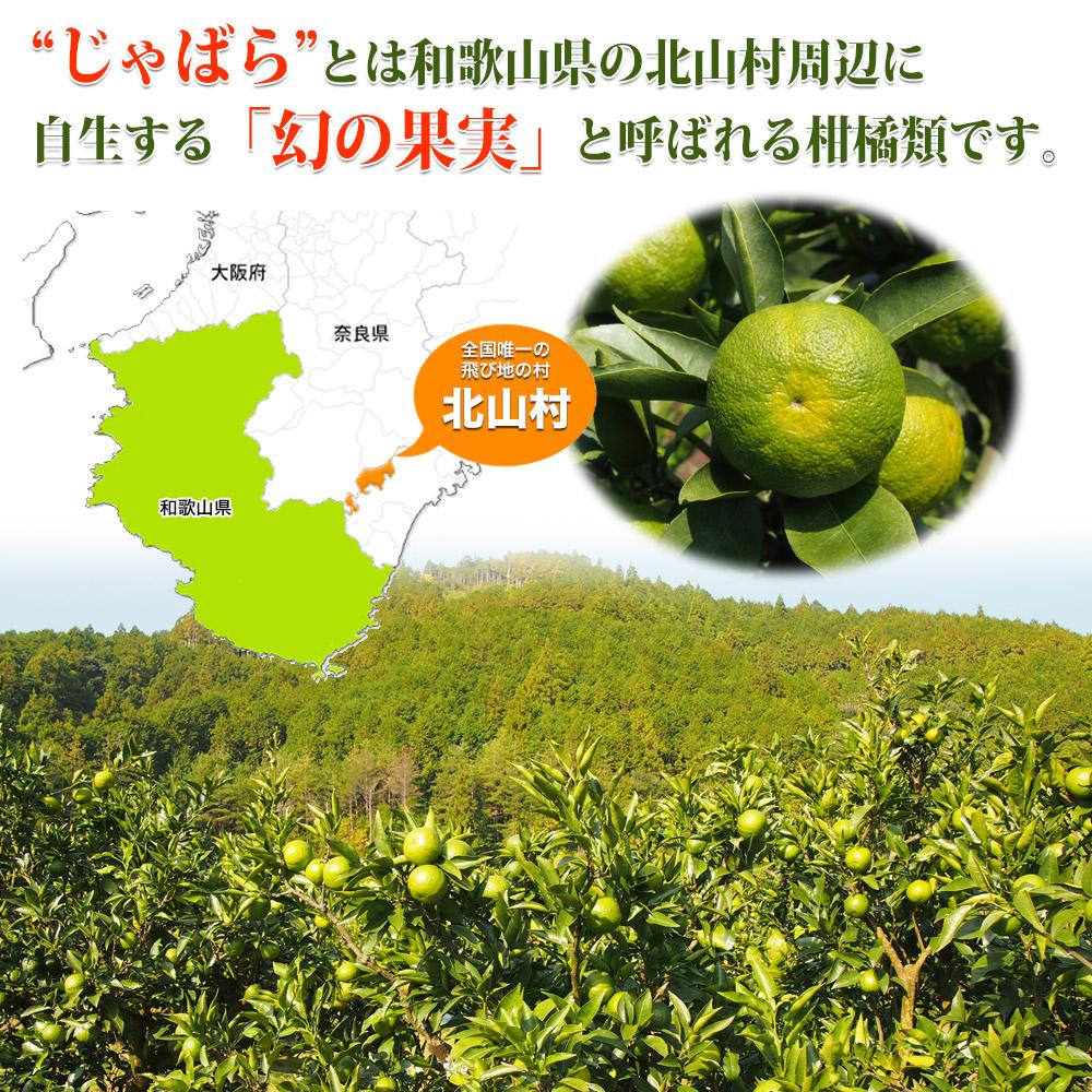 """""""じゃばら""""とは和歌山県の北山村周辺に自生する「幻の果実」と呼ばれる柑橘類です。"""
