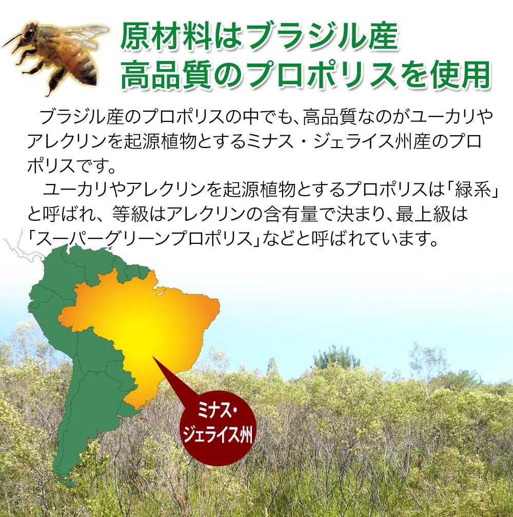 ミツバチが作る自然の防御物質プロポリス ミツバチパワーで健康生活!抵抗力アップ!