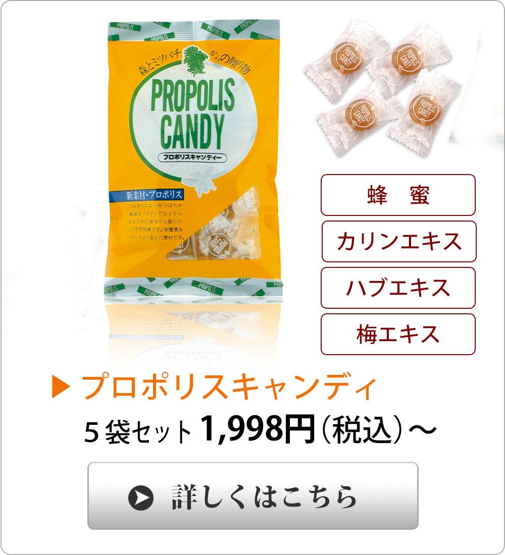 プロポリスキャンディ/カリン、梅エキス入り