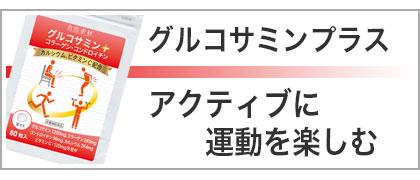 グルコサミン、コンドロイチン